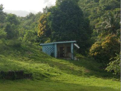 spring garden house jamaica